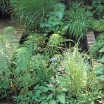 Water Garden Design Solution by Forbeli Home - London, UK, Bordeaux, France