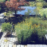 Water Garden Design - swimming pool Solution #40 by Forbeli Home - London, UK, Bordeaux, France
